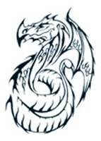 Tribal Celtic design dragon 4 tattoo (large)
