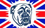 British Bulldog Union Jack