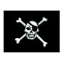 Pirate skull and crossbones flags