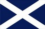 Scottish Flag temporary tattoo