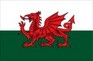 Welsh Flag temporary tattoo