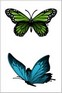 Elegant Butterfly swimming tattoos